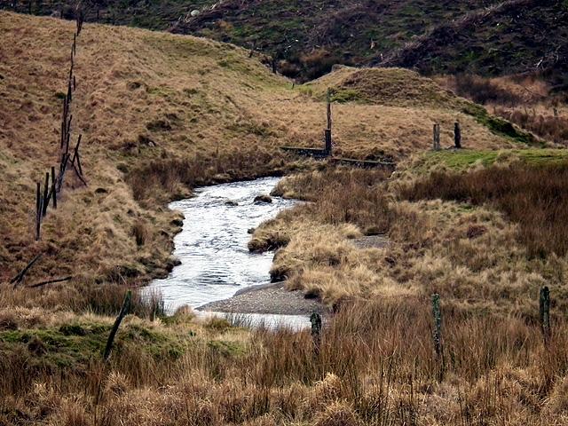 Nant Rhuddlan flows towards Nant-y-moch