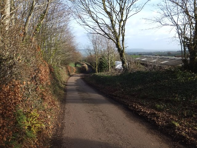 Knowle Lane passing Gladlands Farm