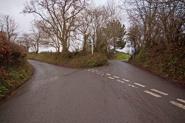 Ivy Cross between Maidenford and Westacott
