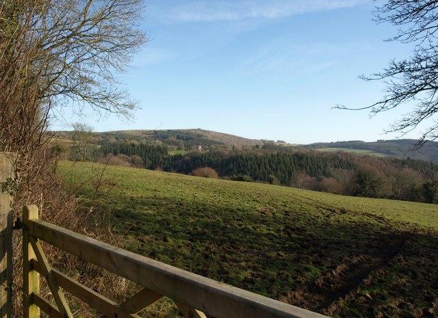 Towards Buckland in the Moor