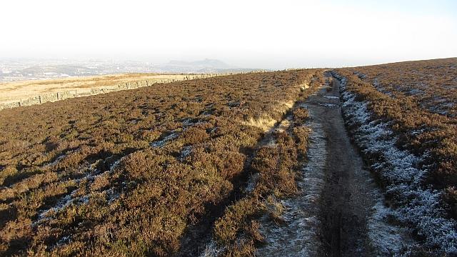 Path beneath Capelaw Hill