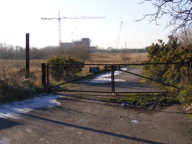 Crane Ahead