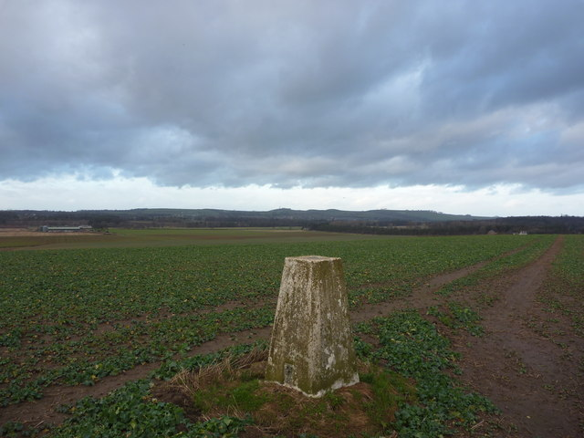 East Lothian Landscape : 93m Trig Point near Bolton