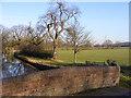SJ9308 : Canal Bridge View by Gordon Griffiths