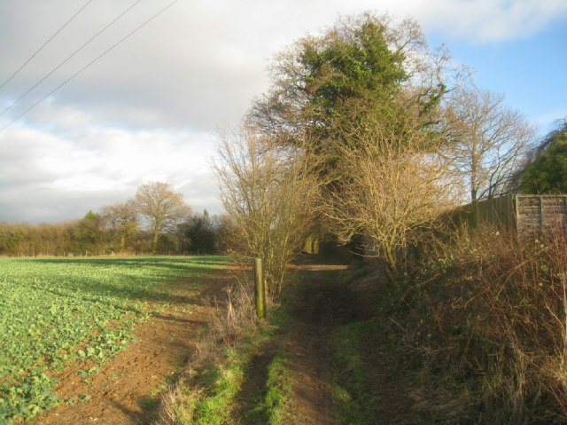 Path towards Pardown