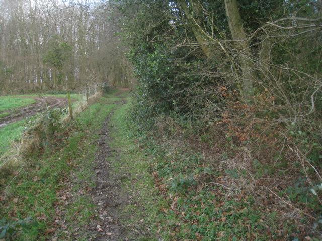 Wayfarer's Walk