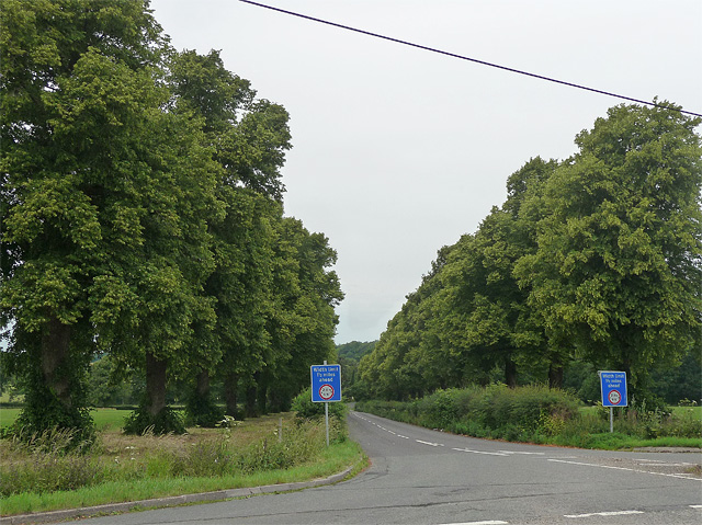 Country road near West Stratton