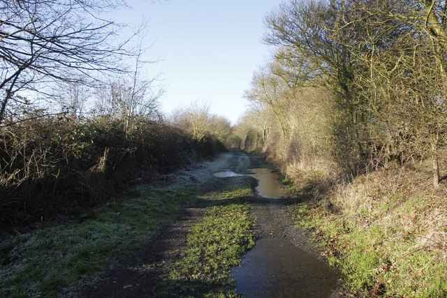 Track back to Forest road bridge