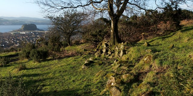 Old dry-stone wall