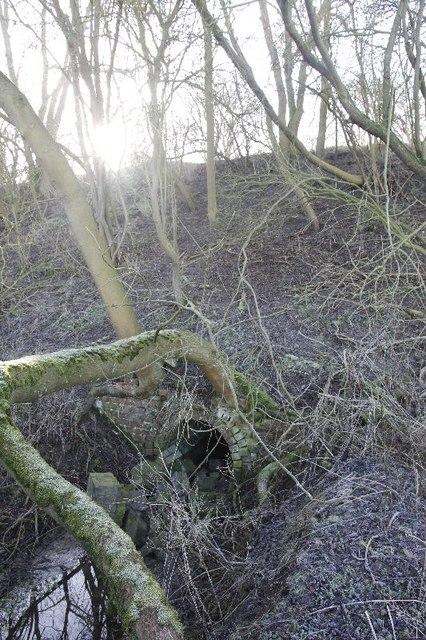 Culvert under the railway