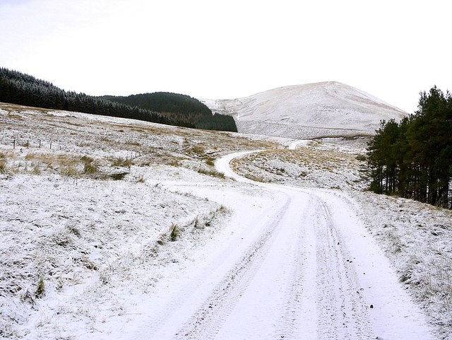 Track to Uswayford near Trows Plantation