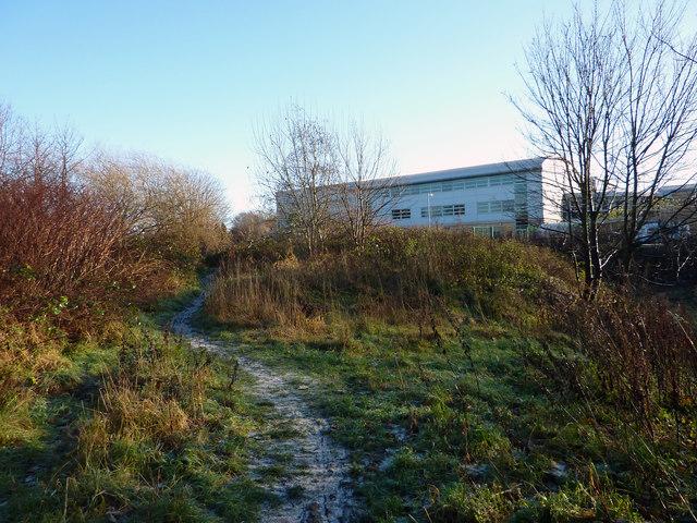 Footpath through the Clough, Chorlton-cum-Hardy