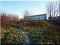 SJ8293 : Footpath through the Clough, Chorlton-cum-Hardy by Phil Champion