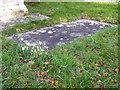 SU1628 : Snowdrops in the churchyard, Britford by Maigheach-gheal