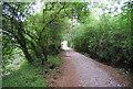 TQ7454 : Medway Valley Walk by N Chadwick