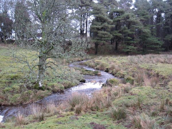 Middle Burn, Stonehaugh