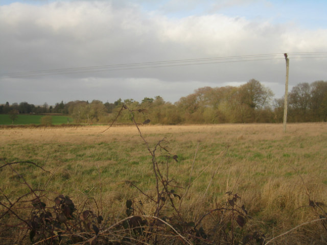 Field by Itchen Row