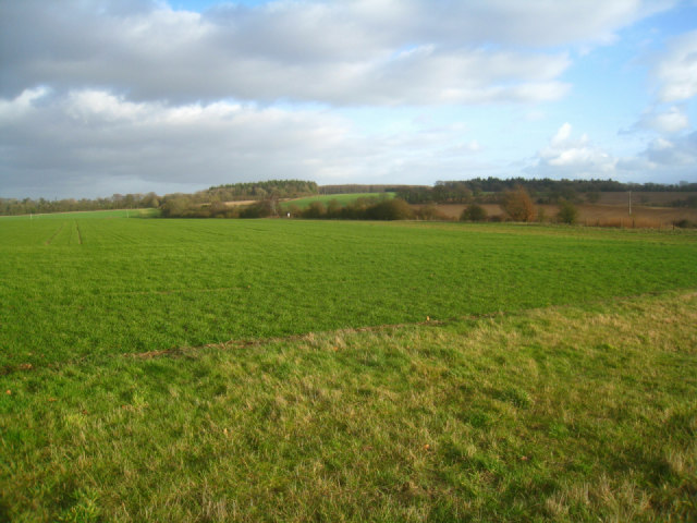 Hampshire countryside in winter