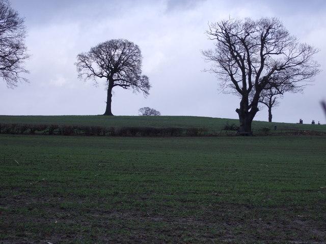 Farmland off the B6165