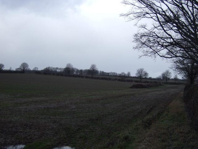 Farmland, The Flats