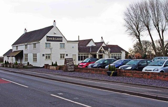 Ewe & Lamb (1), 68 Hanbury Road, Stoke Heath near Bromsgrove