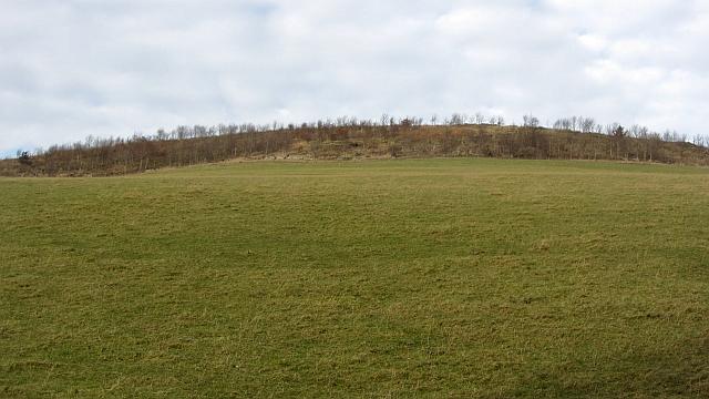 Thirlestane Hill