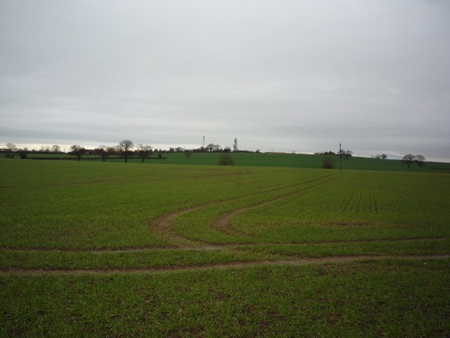 Across to Stillingfleet Hill