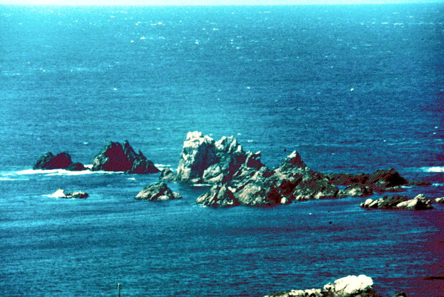 Lizard Point - 1982