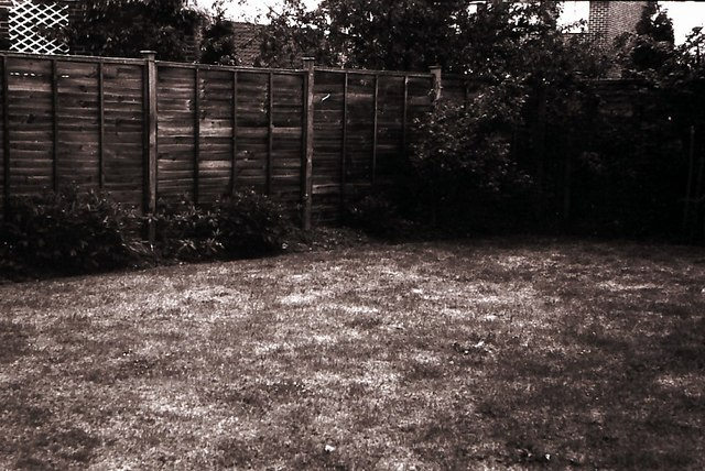 The back garden of 4, Billericay Road in 1972