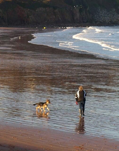 Dog walker, Broadsands