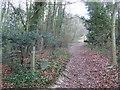 TQ5261 : Public Bridleway near Shoreham by Malc McDonald