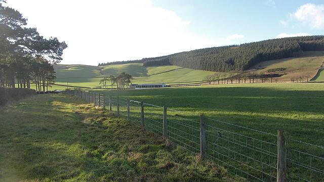Eastern side of Meigle Hill