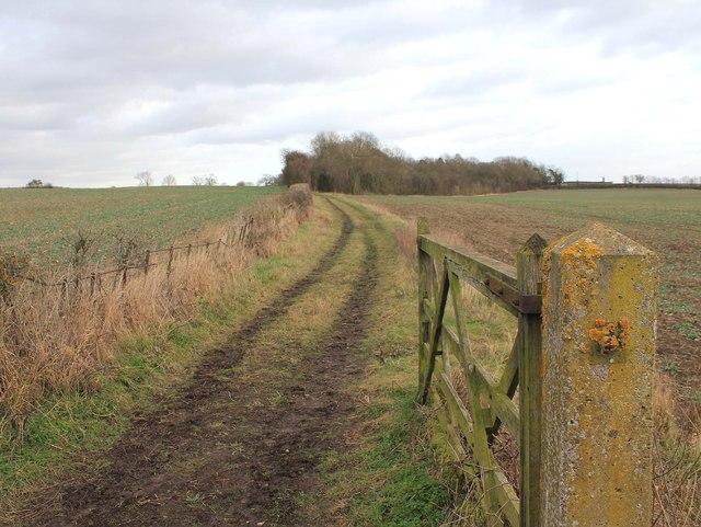 Footpath towards Bishopton Hill