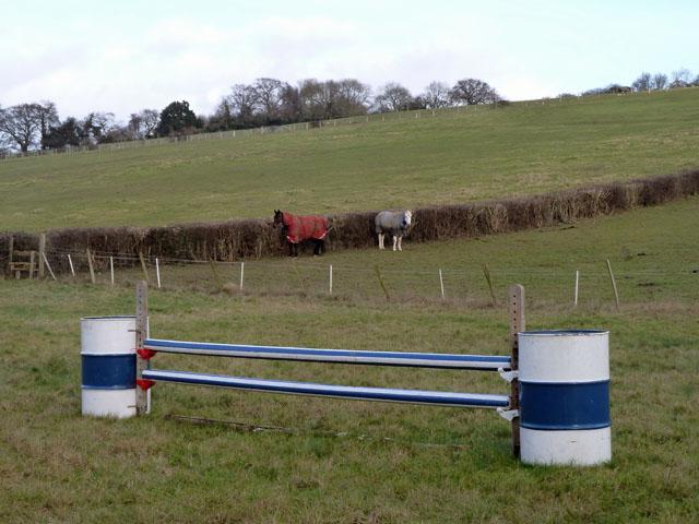 Hurdle and horses