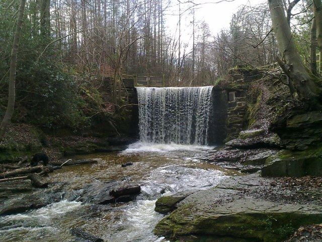 Weir/waterfall in Plas Power Woods near Bersham