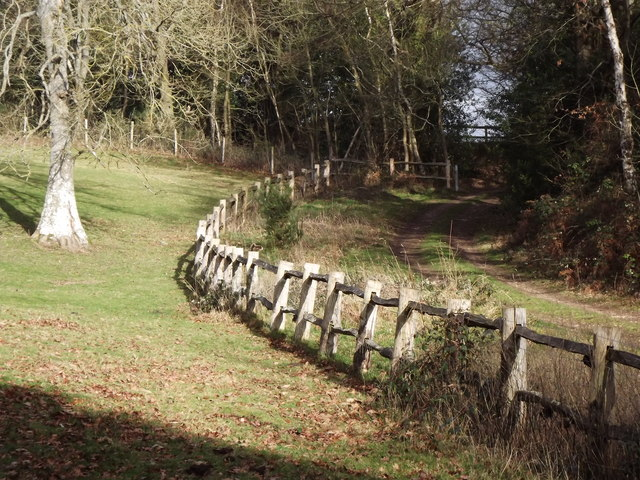 Greensand Way by Sheephatch