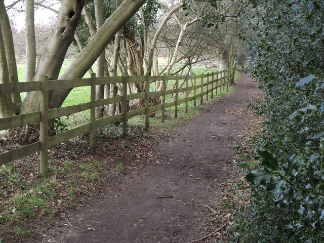Greensand Way by Tilford
