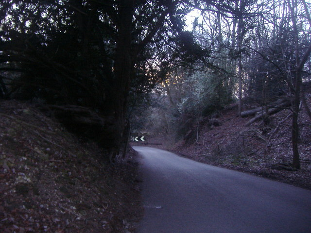 White Downs Lane, near Wotton