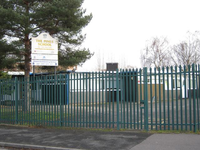 The Pines School