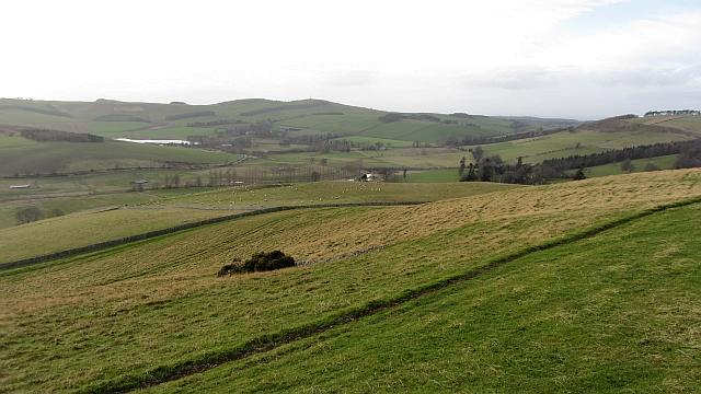 Grassland on Venchen Hill