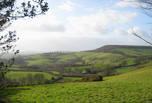 Pilsdon Pen from Lewesdon Hill