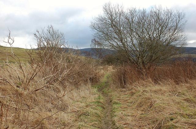Ex-railway line east of Broughton