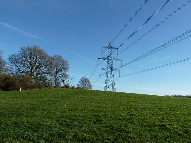 Pylon near Warr's Wood