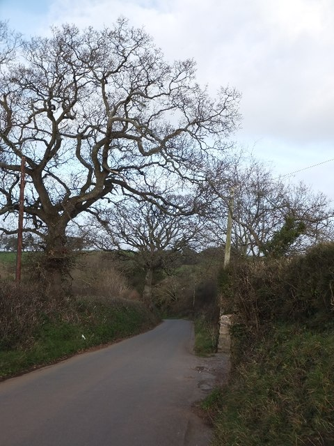Road into Clapham from south