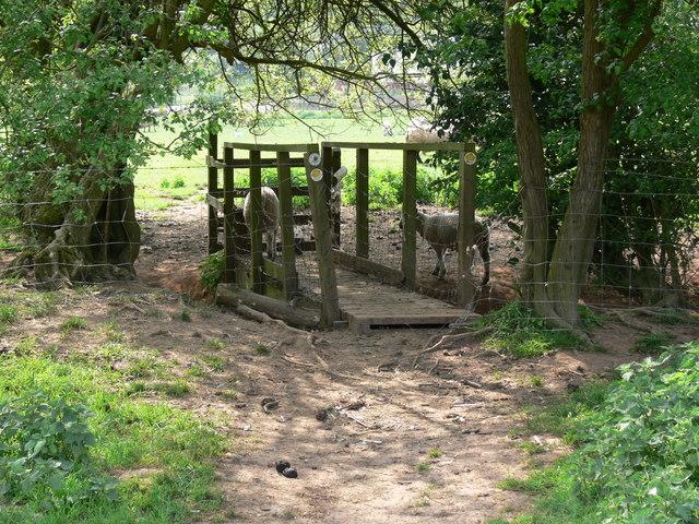 Stile and bridge along the Severn Way