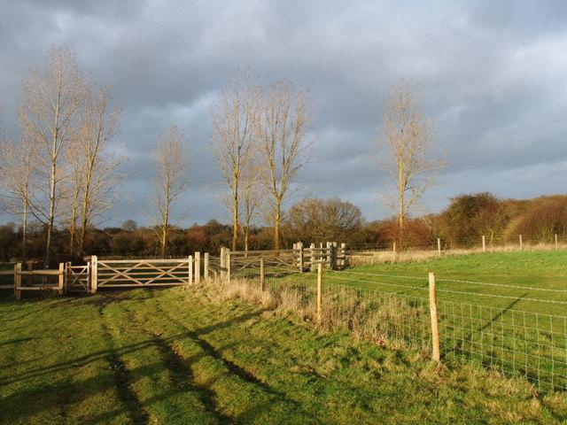 Langdon Nature Reserve