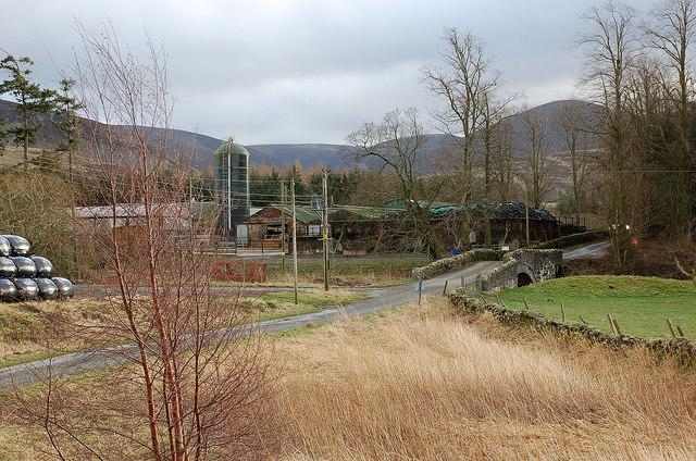Bridge and farm, Rachan