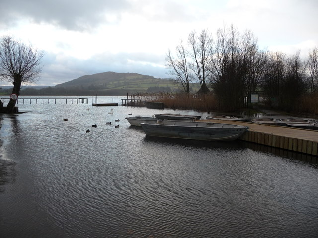 Part of Llangorse Lake in winter
