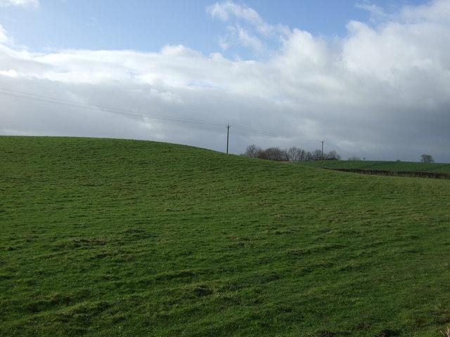 Farmland near Markington