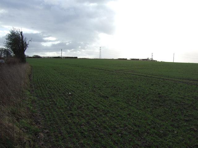 Farmland, Wormald Green
